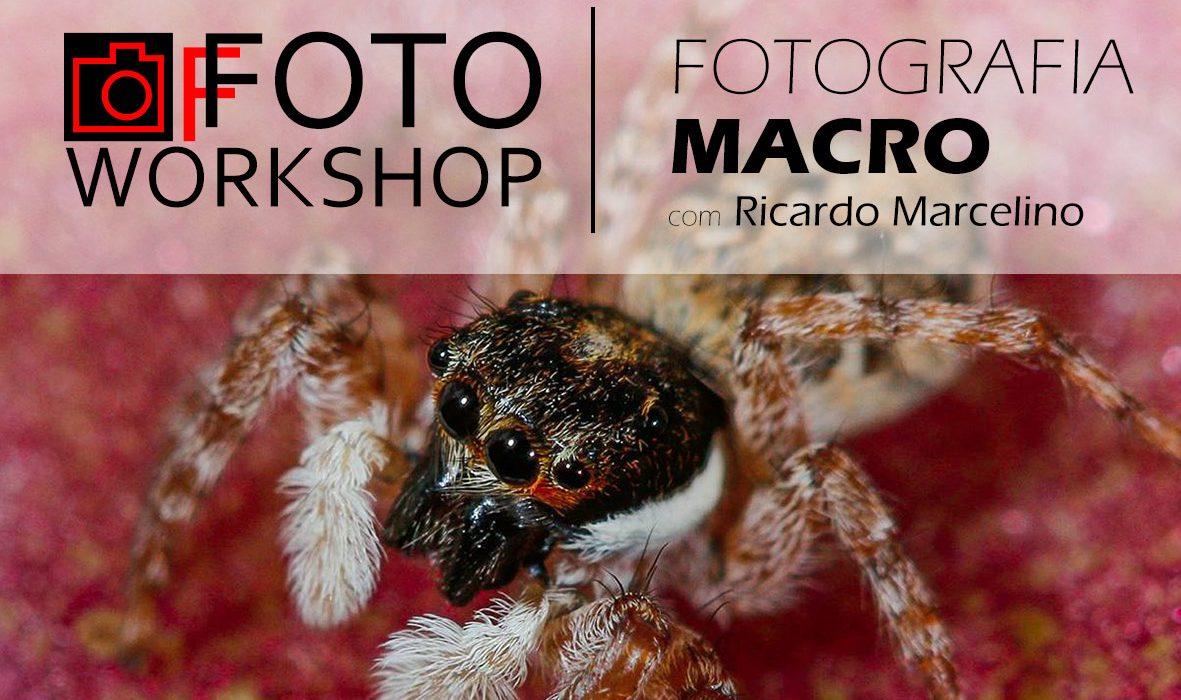 Workshop Fotografia Macro